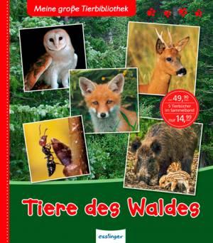 Meine große Tierbibliothek: Tiere des Waldes (Sammelband)