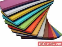 Liegepolster 160 x 54 x 8 cm (Kunstleder beidseitig)