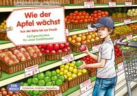 Kamishibai - Wie der Apfel wächst