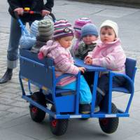 Kindertransportwagen - Ausflugswagen Krippe