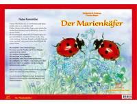 Kamishibai - Der Marienkäfer